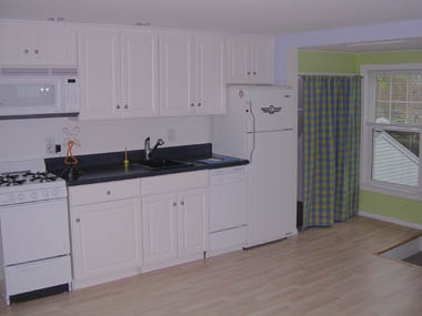 the apartment size dishwasher 18 inch which cost twice what a standard size dishwasher cost sink and faucets were installed